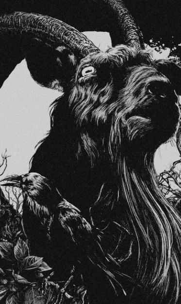 goat8912.jpg