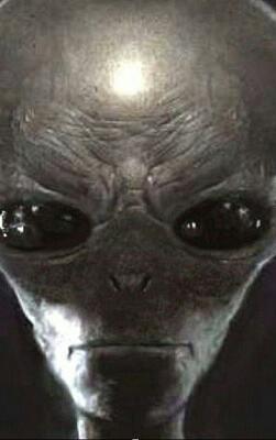 alien-face-16598.jpg