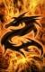 dragon1427.jpg