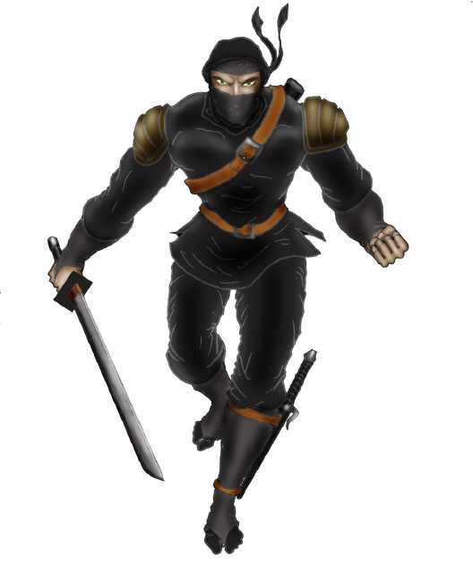 ninja7047.jpg