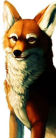 rainbow_yote_fox_dog_thing_by_cottondragon-d6v3gaw4677.jpg